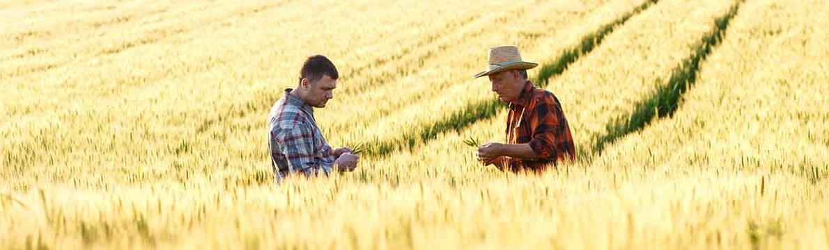Nos prestations chez les agriculteurs