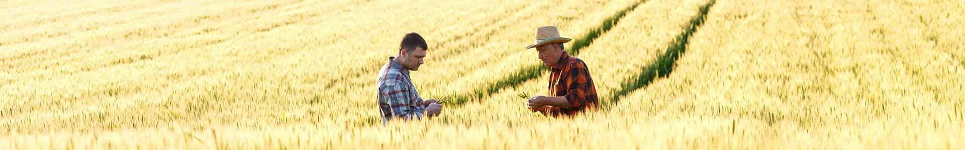 banner nos prestations chez les agriculteurs