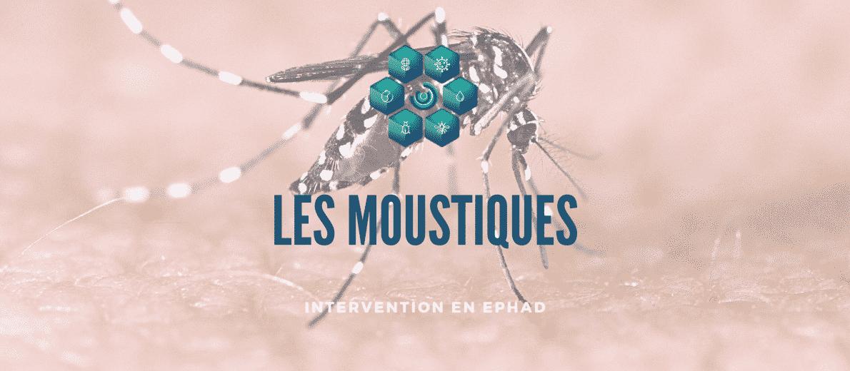 se débarrasser des moustiques