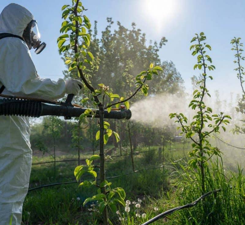 La nébulisation d'insecticide biologique